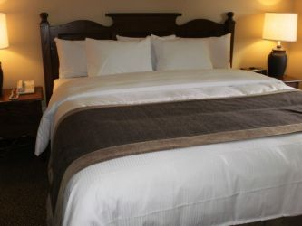 The comfy beds include a duvet, duvet cover, and accent throw piece.