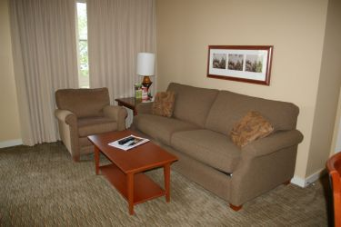 Living Room 1, 2 or 3 bedroom: An example portion of the Living Room in a 1, 2 or 3 bedroom unit.